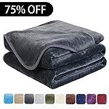 EASELAND Soft Queen Size Summer Blanket All Season Warm Microplush Lightweight...