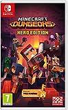 Minecraft Dungeons - Hero Edition [Importación francesa]