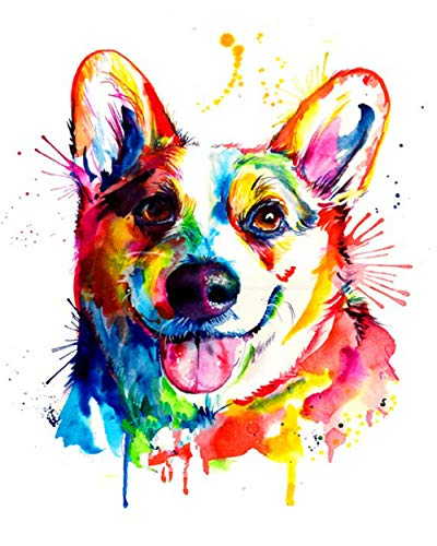 Pintura por Números - Perro colorido - DIY Pintura al óleo Pintura artística con pinturas acrílicas y pinceles para adultos, niños y principiantes - 40x50cm (Sin marco)