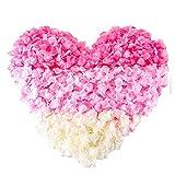 Eamoil Pétalos de Rosa Petalos de Rosa Rojos Artificiales Pétalos de Rosa para Bodas Decoración, Fiestas, día de San Valentín y Ambiente Romántico, Proponer, Fores de Boda, Confeti 6000 Piezas