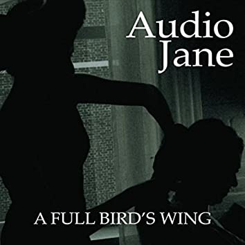 A Full Bird's Wing