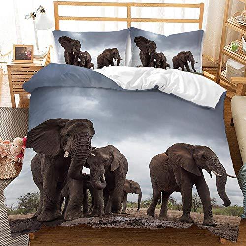 YMYGYR Funda de Almohada con Funda nórdica con Estampado de Elefante arcoíris en 3D, Ropa de Cama Suave y cómoda, Adecuada para Decorar dormitorios, hoteles temáticos-D_210x210cm (3 Piezas)