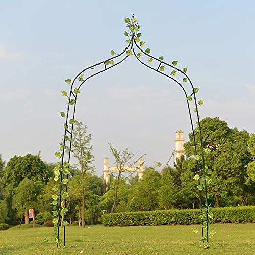 Mitian Wedding Arch Metal Steel Garden Arbor Pergola Arch for Rose Climbing Plants Supporting Arch Garden Decoration