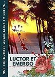 « Luctor et Emergo »: Nur ein kurzer Augenblick im Leben… und plötzlich ist nichts mehr, wie es war… (German Edition)