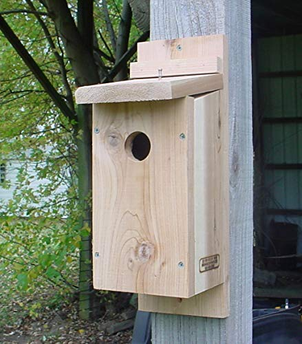 Bird Houses by Mark Downy Woodpecker House