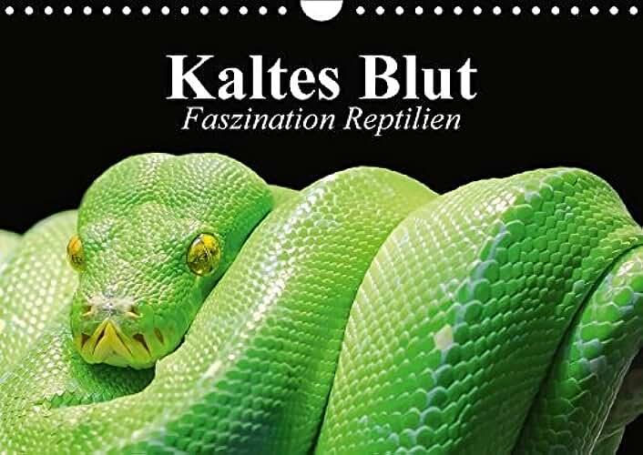 Kaltes Blut. Faszination Reptilien (Wandkalender 2018 DIN A4 quer): Urzeitliche Anpassungskünstler und schützenswerte Wesen (Monatskalender, 14 Seiten )