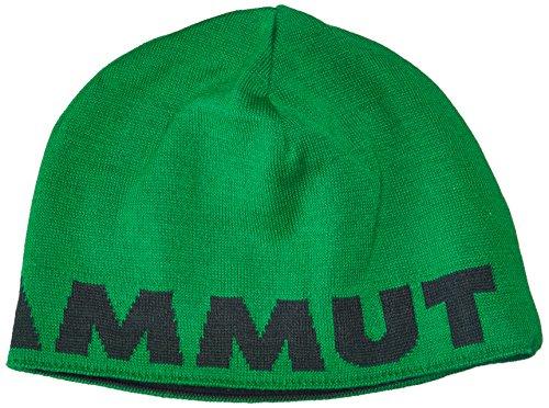 Mammut Logo Beanie Bonnet Mixte Adulte, Graphite, FR : (Taille Fabricant : One Size)