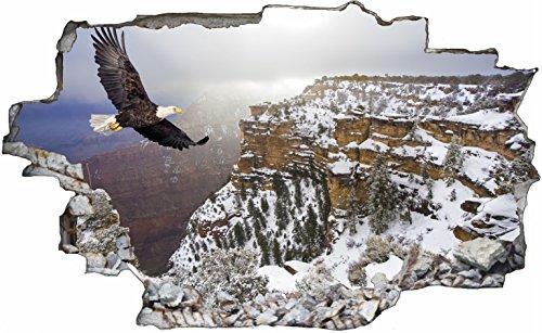 DesFoli Adler Falke 3D Look Wandtattoo 70 x 115 cm Wanddurchbruch Wandbild Sticker Aufkleber C116