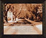 Home Cabin Décor Life is by John Jones 20x24 Mother Teresa Quote Inspirational Sepia Tree Road Framed Art Print Picture