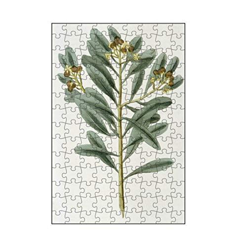 artboxONE-Puzzle S (112 Teile) Natur Zimtpflanze - Puzzle Science cannelle cinnamomum