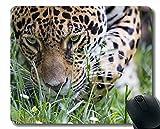 Alfombrilla de ratón Antideslizante, Leopardo Cub Predators Big Cat Baby 66485 Alfombrilla de ratón con Borde Cosido