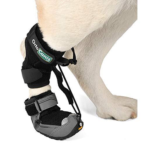 Ortocanis Bota para Corrector propioceptivo - para Perros con knuckling - Perros Que arrastran Las Patas traseras - 8 Tallas - Color Negro (XXL)