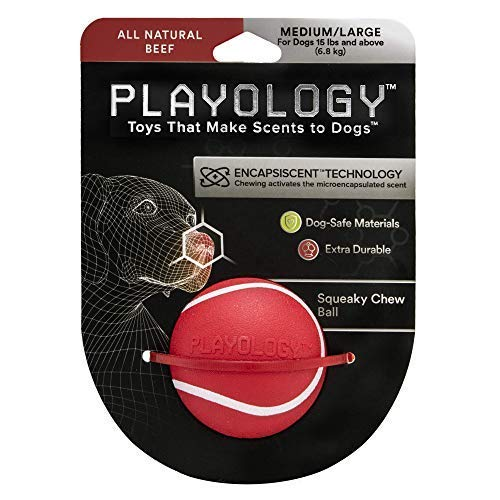 Playology Medium/Large All-Natural Beef Scented Squeaky Chew Ball