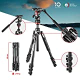 Manfrotto Befree Live Lever Lock Lightweight Aluminium Travel Tripod with MVH400AH Fluid Head