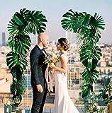 PietyPet 68 Stück 8 Arten Tropische Pflanze Palm Blätter Monsterablätter, Plastikpalmenblätter, künstliche Palmenblätter mit Stielen, für Hawaiische Luau Dschungel Strand Thema Tischdekoration - 2
