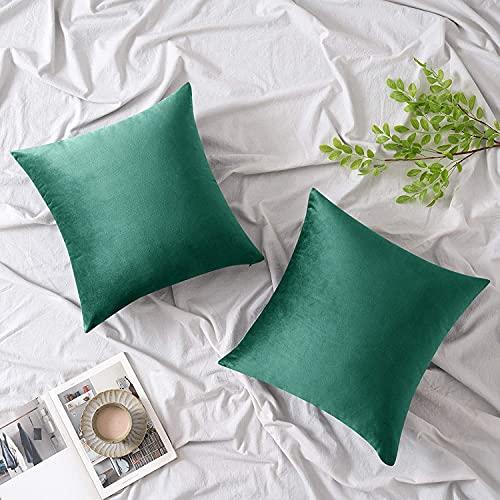 Woaboy - Juego de 2 fundas de almohada decorativas de terciopelo, fundas de cojín sólidas y suaves, fundas de cojín cuadradas para...