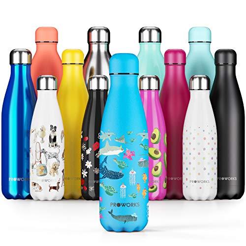 Proworks Bottiglia Acqua in Acciaio Inox, Vuoto Isolato Borraccia Termica in Metallo per Bevande Calde per 12 Ore & Fredde 24 Ore, Borraccia per Sport e Palestra - 500ml sotto Il Mare Azzurro Polvere