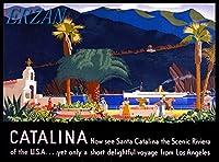 ERZANメタルポスター壁画ショップ看板ショップ看板アメリカの旅行広告のサンタカタリナ島の風光明媚なリビエラインテリア 看板20x30cm