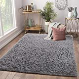 Terrug Soft Kids Room Rug, Gray Shag Area Rugs for Bedroom Living Room Carpet,Plush Fluffy Fur Rug for Nursery Girls Dorm Home Decor 3X5 Feet, Grey