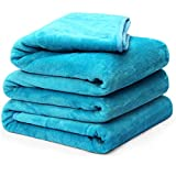 Fleece Blanket Queen King Twin Throw Size Soft Summer Cooling Breathable Luxury Plush Travel Camping Blankets Lightweight for Sofa Couch Bed (Turquoise, Queen (90' x 90'))