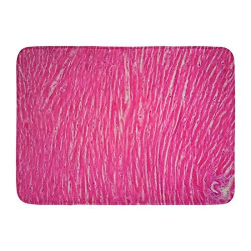 Kanaite Fußmatten Badteppiche Outdoor/Indoor Fußmatte Gewebe Histologie des menschlichen Herzmuskels Unter dem Mikroskop Ansicht Herz Glatt Badezimmer Dekor Teppich Badteppich