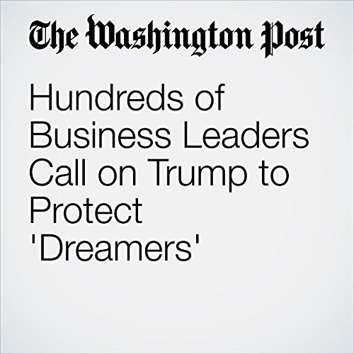 Hundreds of Business Leaders Call on Trump to Protect 'Dreamers' copertina