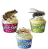 Espeluznante Crawly/insectos Party Pack Cup Cake Toppers–comestibles de pie decoración 48