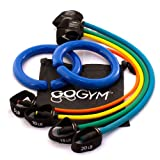 GOGYM FIT Weighted Steel Rings, Resistance Exercise Bands with Loop for Fitness, Stretching, Strength Training, Yoga, Pilates, Cardio, Crossfit, Includes Carry Case and User Guide