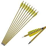 SHARROW 12pcs Flechas de Carbono 30 Pulgadas Spine 450 con Plumas de Pavo para Arco Compuesto Recurvo Flechas de Caza (12pcs)