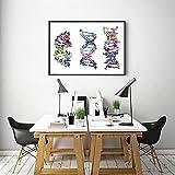 Arte De La Pared MoléCulas De Adn Coloridas ImpresióN BiologíA DecoracióN De La HabitacióN DefinicióN De QuíMica Oficina De Ciencia Pintura En Lienzo PóSter Minimalista-50x70cm Sin Marco