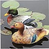 LjzlSxMF Weiblich Männlich Mandarin Ente Statue Teich Ornament Enten-Skulptur-Fertigkeit-Dekoration für Pool Aquarium Hof ??Gartenmöbel