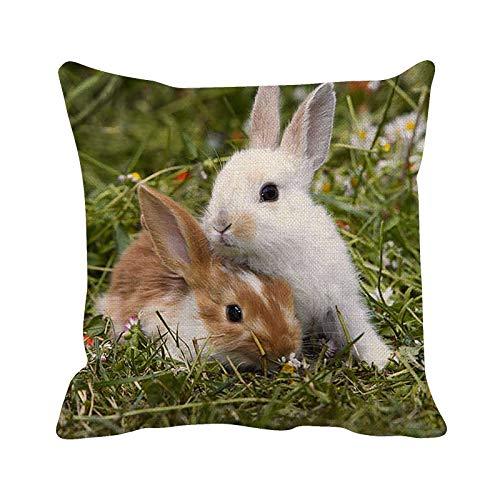 Funda de almohada cuadrada de lino con estampado de conejo de Pascua suave y decorativa, fundas de cojín para sala de estar, sofá, dormitorio, con cremallera invisible, 45 cm x 45 cm
