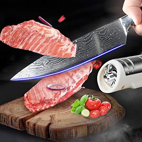 EmNarsissus Afilador de Cuchillos eléctrico, Carga USB, Piedra de afilar motorizada, Piedra de afilar Profesional, Herramientas de Cocina
