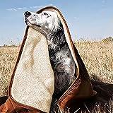 GZGZADMC Waterproof Dog Blanket, Microfiber Pet Puppy Cat Fleece Sherpa Sofa Throw Blanket Cushion Mat for Couch Sofa Bed, Soft Reversible Furniture Protector Cover - 80x60cm,Khaki