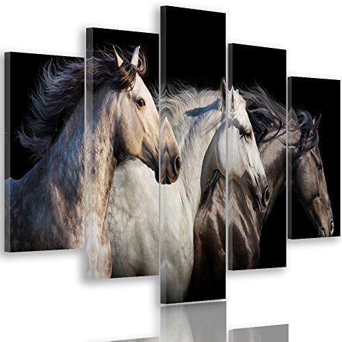 Feeby Frames, Cuadro en lienzo - 5 partes - Cuadro impresión, Cuadro decoración, Canvas Tipo A, 200x100 cm, CABALLOS, ANIMALES, NATURALEZA, NEGRO, BLANCO