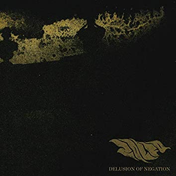 Delusion of Negation