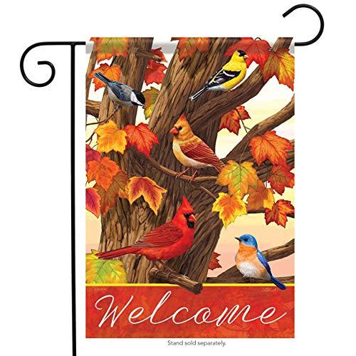 Best Deals! US Flag Store 49003 Carson Garden Flag, Brown, Orange, Yellow, Red, Blue