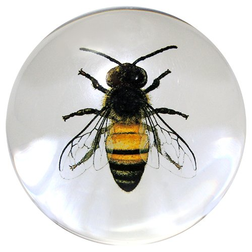 """Glass Dome Paperweights 3"""" DIA (Clear Bee)"""
