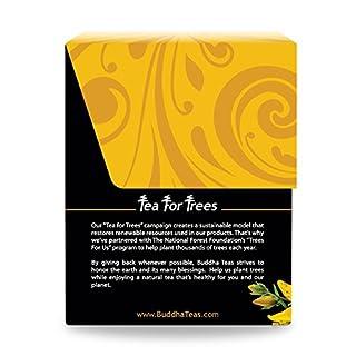اسعار Organic St. John's Wort Tea - Kosher, Caffeine-Free, GMO-Free - 18 Bleach-Free Tea Bags