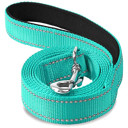 Joytale Reflective Nylon Dog Leash, Padded Handle Dogs Leashes for Walking,Training Lead for Medium & Small Dogs, 6FT,Teal