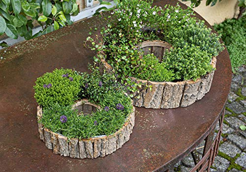 """Pflanzer """"Rindenstücke"""", 2er Set, rundes Pflanzgefäß im Rad-Design, Kräutertopf, Pflanzring, Pflanztopf"""