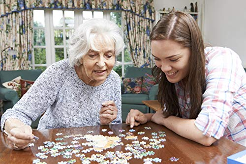 Puzzle in legno per adulti da 1000pz, Rilassante immagine di rocce di fiume in un giardino zen - 50 cm x 70 cm Puzzle in vero legno da 1000 pezzi per Adulti e Famiglie