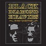 Songtexte von Black Diamond Heavies - Every Damn Time