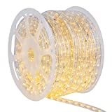 Wintergreen Lighting LED Rope Light Kit
