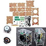 JCCOZ URG - Kit de altavoces amplificadores de 3 W para estudiantes de audio de soldadura, experimento de entrenamiento de bricolaje circuito de placa URG