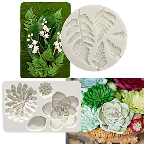 2PCS Fondant Mold Succulent Silicone Fondant Mold Fern Fondant Mold Succulent Leaves Silicone Candy Molds Cake Decoration Molds Gumpaste 3D Silicone Molds for Polymer Clay, Cupcakes, Resin Sugarcraft