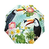 LIUBT - Sombrilla de 3 pliegues con diseño de tucán tropical con 3 pliegues y cierre automático, para el sol, la lluvia y los rayos UV