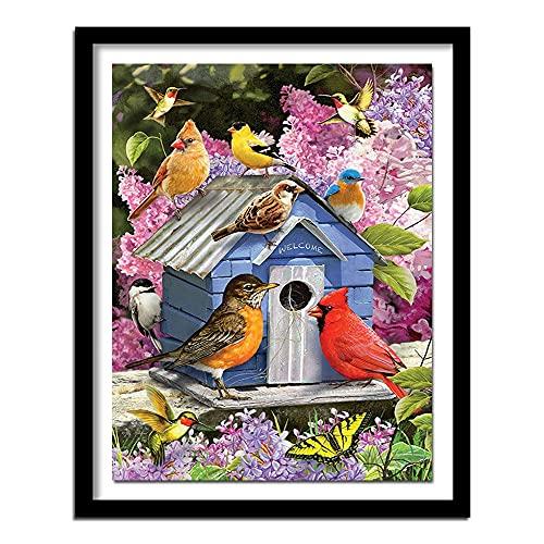 ZXXGA 5D DIY Kit de Pintura de Diamantes pájaro Mariposa Bordado de Diamantes Pintura Bordado Punto de Cruz Pintura para decoración de la Pared del hogar Diamante Redondo 40x50cm