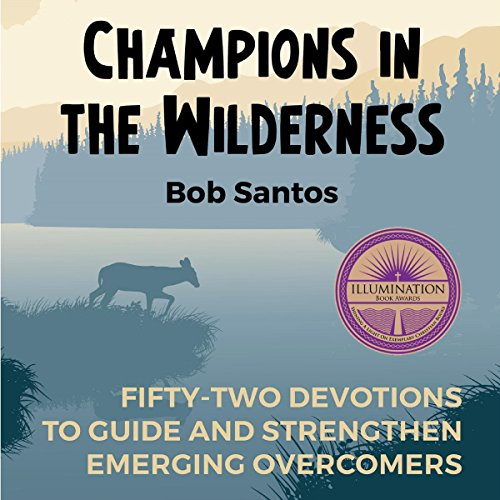 Champions in the Wilderness audiobook cover art