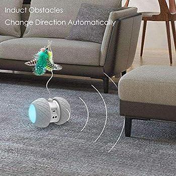 EKOHOME Jouet Robotique Interactif pour Chat Jouets de Plume/Boule Rotatifs Automatiques pour Chaton/Chats, Jouet électronique Rechargeable Kitty USB, Batterie de Grande Capacité, 4 Plumes Bonus